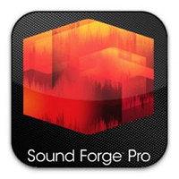 Учебный Курс Sound Forge + MS Power Point продвинутый уровень (запись голоса, обработка видеофайлов)