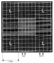 Камера подсчета BRAND с сеткой Нейбауэра, светящиеся линии