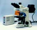 Модульная микроскопная платформа Motic BA400
