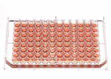 96-луночный планшет Thermo Scientific NuncTM Edge, 96-лунок с плоским дном, ПС