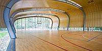 Спортивный линолеум GERFLOR RECREATION 60 Wood