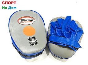 Лапы боксёрские для отработки ударов Twins кожа (синий)