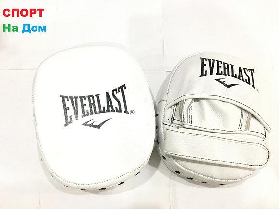 Лапы боксёрские для отработки ударов Everlast кожа (Белый), фото 2