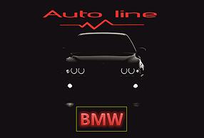 ШГУ AUTO LINE для BMW