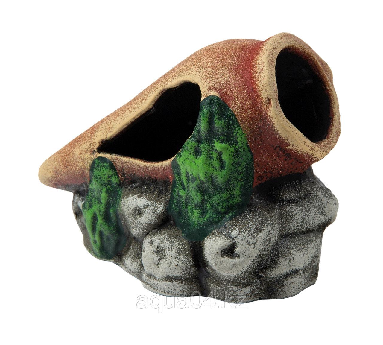 Амфора на камнях (ГротАква)