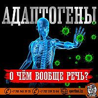 Адаптогены - иммуностимуляторы и Ваш организм