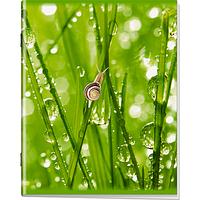 Общая тетрадь 48 листов. Стихия вод
