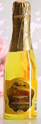 """Шампунь-кондиционер для волос """"Шампанское Мондоро"""" для кристального блеска, 450 мл МИКС, фото 2"""