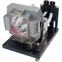 Лампы для проектора SANYO POA-LMP117 (610 335 8406)
