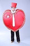 Костюмы ко Дню св. Валентина, фото 4