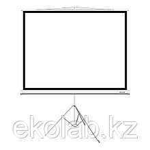 """Экран на треноге Deluxe DLS-T203x154W (80""""х60""""), Ø - 100"""", Раб. поверхность 195х145 см., 4:3"""