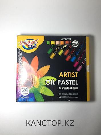 Пастель, мелки маслянные Paintyou  разноцветные, 24 цветов, фото 2