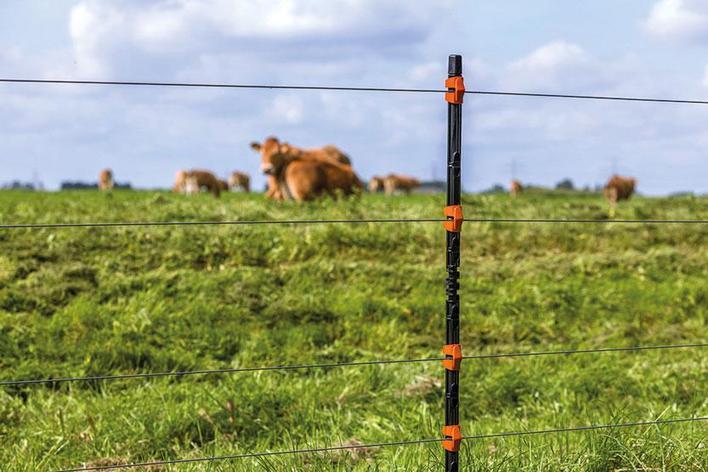 Электропастух для животных, фото 2