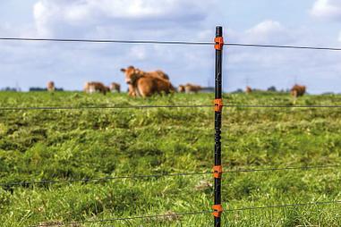 Электропастух для животных