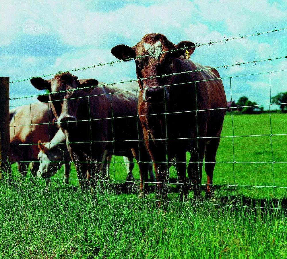 Электропастухи для скотоводства