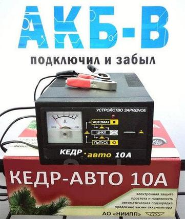 Устройство зарядное «Кедр-авто» для автомобильных аккумуляторов (Кедр-авто-5), фото 2