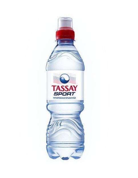 Минеральная вода TASSAY Sport без газа, 0,5л, пластик