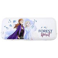 Набор детской декоративной косметики Pop Girls 1599003 в пенале Холодное сердце: Forest Spirit