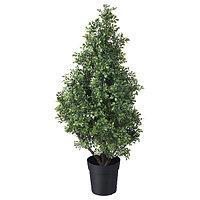 Растение искуственое горшке, д/дома/улицы самшит ФЕЙКА 105 см ИКЕА, IKEA, фото 1
