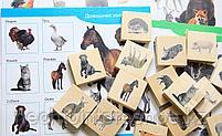 Лото деревянное Домашние и дикие животные, фото 4