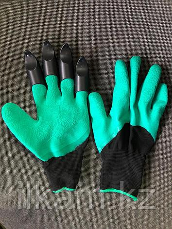 Перчатки огородника, фото 2