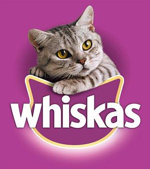Вискас сухие корма для кошек