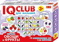 IQ  CLUB: Изучаем овощи и фркуты