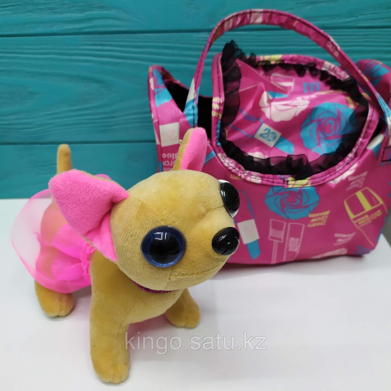 "Собачка в сумке ""Chi-Chi Love"""
