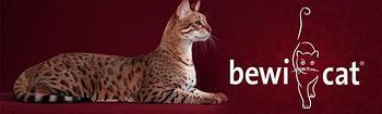 Bewi Cat,Беви кет влажные консервы для кошек