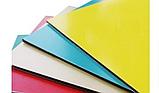 Монтаж алкана(лист алюминия). на фасады зданий, входные группы, параппеты, откосы,отливы. Покраска., фото 4
