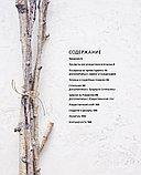 Бронте А.: Волшебная зима. Рецепты и традиции Скандинавии для ярких новогодних праздников, фото 4