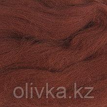 Шерсть для валяния 100% тонкая шерсть 50гр (173 грильяж)
