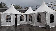 Арена шатра 5 на 5, фото 3