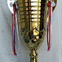 Кубок большой 95 см