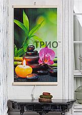 """Настенный обогреватель ТРИО """"Гармония"""" Зимняя распродажа!, фото 3"""