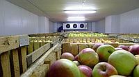 Хладоснабжение для овощехранилищ