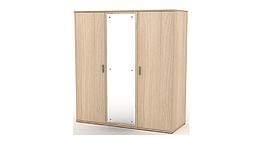 Шкаф-гардероб с зеркалом