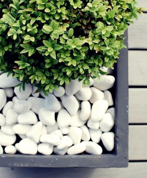 Белая галька, гравий для дизайна