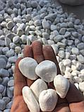 Белая галька каменная для ландшафтного дизайна, фото 5
