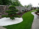 Белая галька каменная для ландшафтного дизайна, фото 6