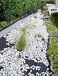 Белая галька каменная для ландшафтного дизайна, фото 8