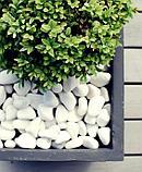Белая натуральная галька мраморная, фото 9