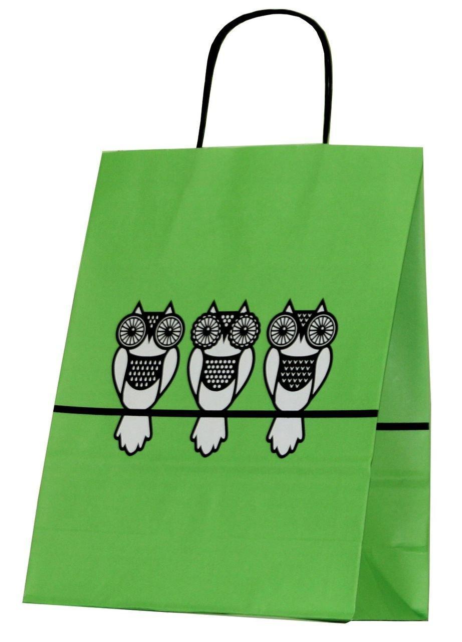"""Пакет-сумка (250+110)х320мм, 90г/м2,крафт белый с кручеными ручками """"Зеленая Совы"""", 25 шт"""