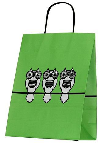 """Пакет-сумка (250+110)х320мм, 90г/м2,крафт белый с кручеными ручками """"Зеленая Совы"""", 25 шт, фото 2"""
