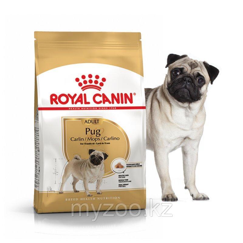Корм для взрослых собак породы мопс PUG 25 МОПC 1,5 kg