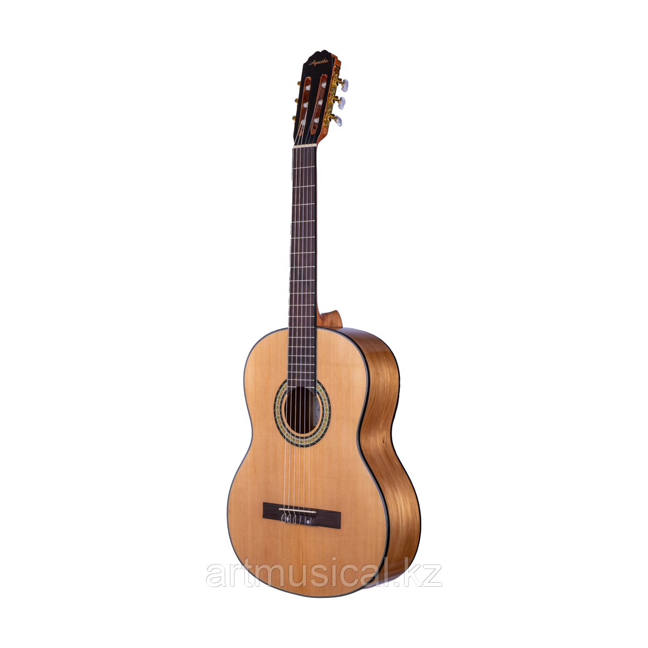 Гитара Agnetha ACG-E140