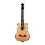 Гитара Agnetha ACG-E140, фото 2