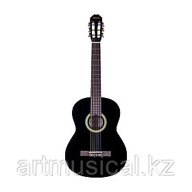 Гитара Agnetha ACG-E150