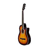 Гитара Agnetha APG-E110C  SB, фото 2