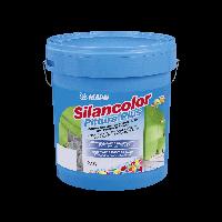 SILANCOLOR PITTURA PLUS водостойкая краска на основе силиконовых смол
